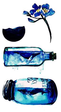 Faux tatouage bouteille mer baleine