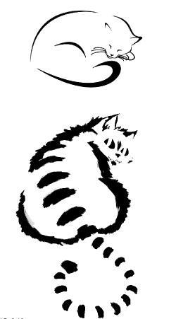 Tatouage temporaire chats dessinés