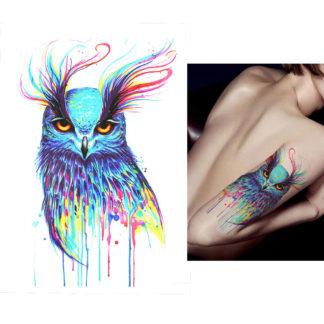 Tattoo hibou peinture color