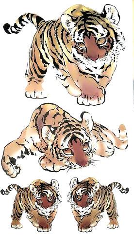 Tatouage temporaire tigre bebe