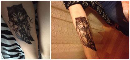 Faux tatouage tete de loup dans attrape-reve