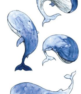 Tattoo baleine bébé