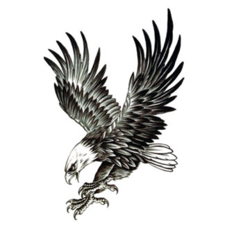 Tatouage ephemere aigle royal à l'attaque