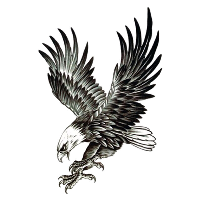 Dessin D Aigle Royal tatouage ephemere aigle royal à l'attaque - kolawi